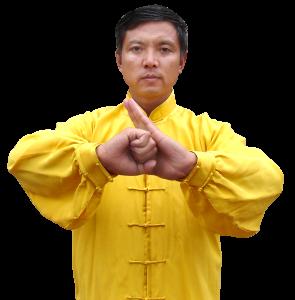 Jingwu ecole d 39 arts martiaux chinois cr e pour for Maitre art martiaux chinois